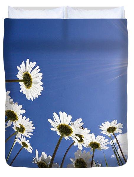 Marguerite Leucanthemum Vulgare Duvet Cover by Konrad Wothe