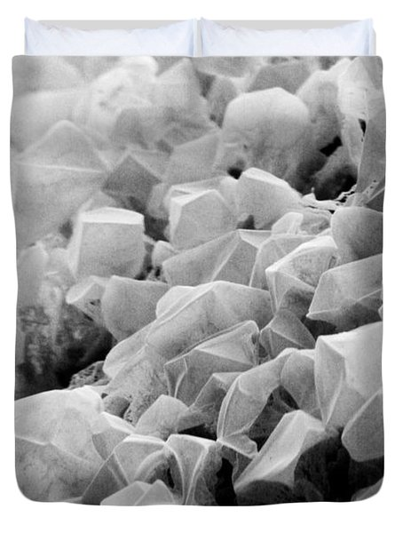 Martian Co2 Crystals Duvet Cover by National Snow and Ice Data Center