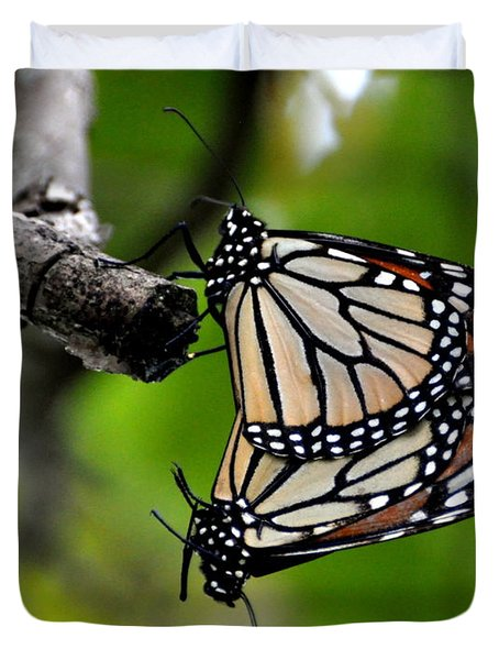 Mating Monarchs Duvet Cover by Marty Koch