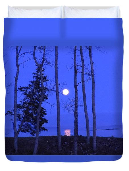May Moon Through Birches Duvet Cover by Francine Frank