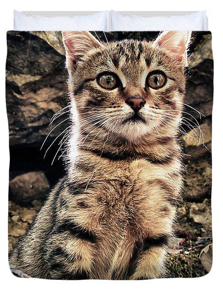 Mediterranean Wild Babe Cat Duvet Cover by Stelios Kleanthous