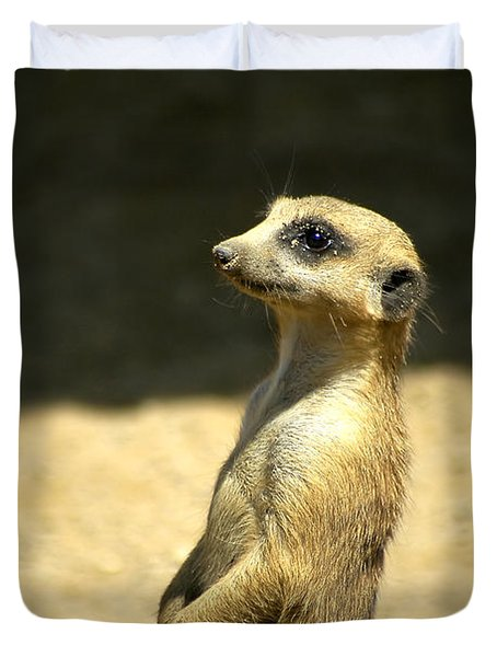 Duvet Cover featuring the photograph Meerkat Mother And Baby by Carolyn Marshall