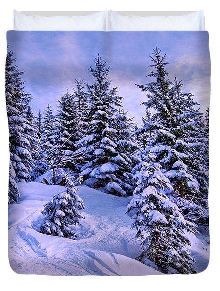 Merry Christmas And A Wonderful New Year Duvet Cover by Sabine Jacobs