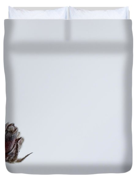 Midwinter Reflection Duvet Cover