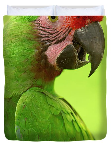 Military Macaw Ara Militaris Portrait Duvet Cover by Pete Oxford