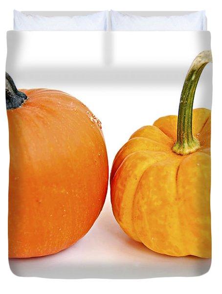 Mini Pumpkins Duvet Cover by Elena Elisseeva