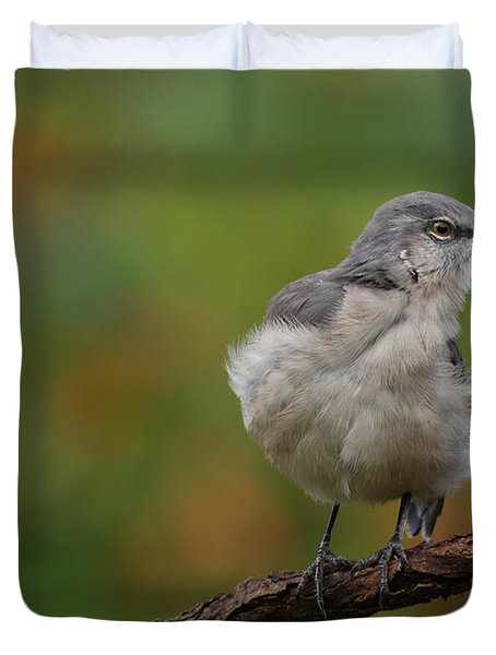 Duvet Cover featuring the photograph Mocking Bird Perched In The Wind by Daniel Reed