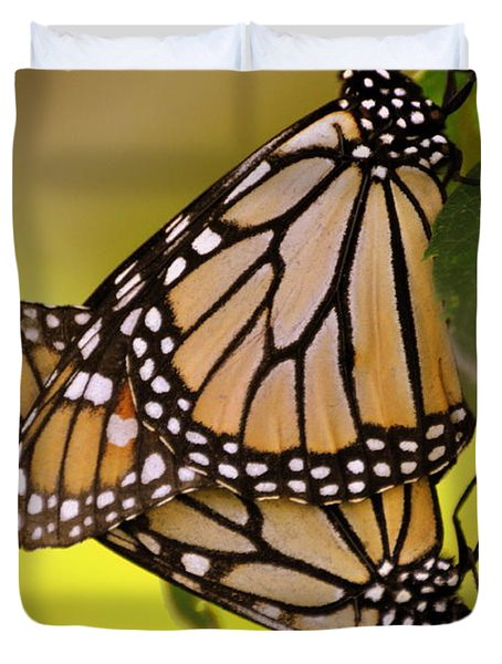 Monarch Bliss Duvet Cover by Marty Koch
