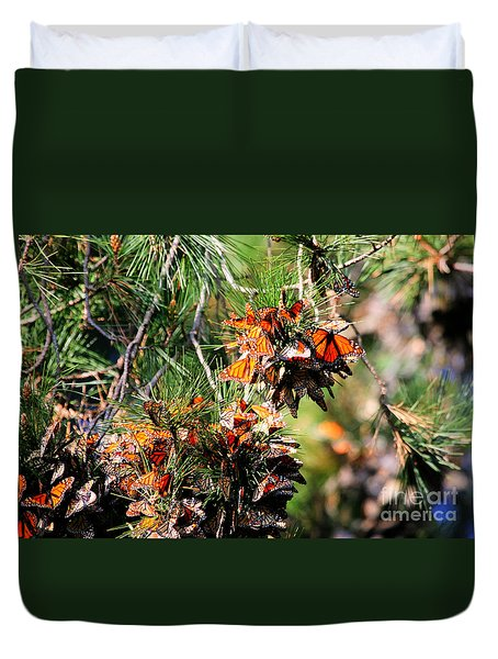 Monarch Butterfly Gathering Duvet Cover by Tap On Photo