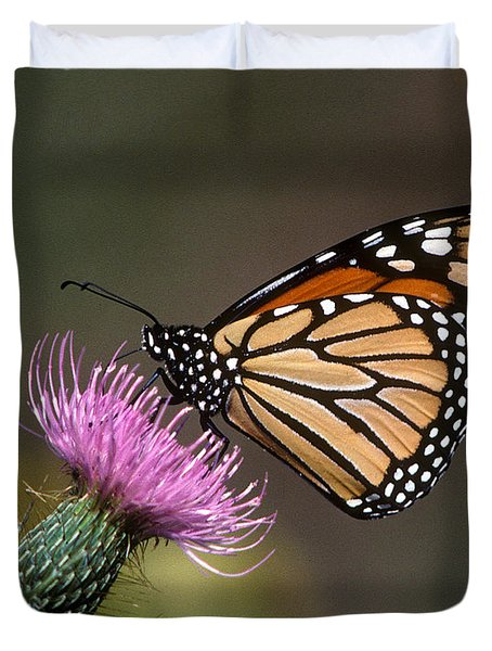 Duvet Cover featuring the photograph Monarch Butterfly On Thistle 13a by Gerry Gantt