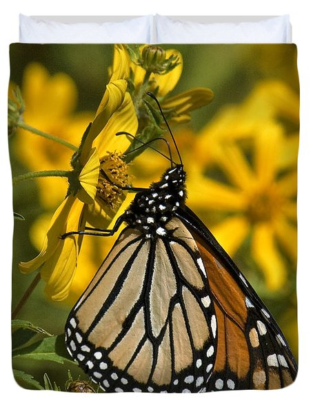 Duvet Cover featuring the photograph Monarch Butterfly On Tickseed Sunflower Din146 by Gerry Gantt