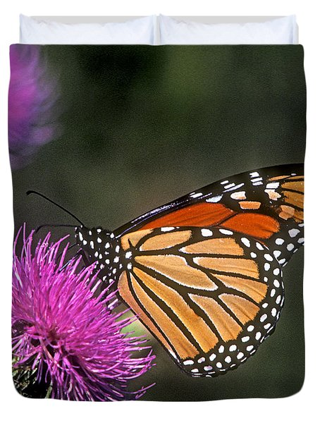 Duvet Cover featuring the photograph Monarch On Thistle 13f by Gerry Gantt
