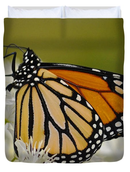 Monarch  Duvet Cover by Rodney Campbell