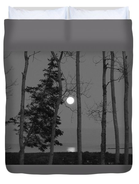 Moon Birches Black And White Duvet Cover by Francine Frank