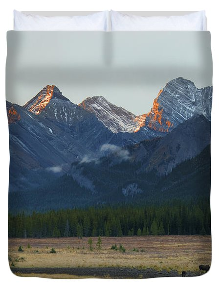 Moose Grazing At Sunset With Mountains Duvet Cover by Philippe Widling