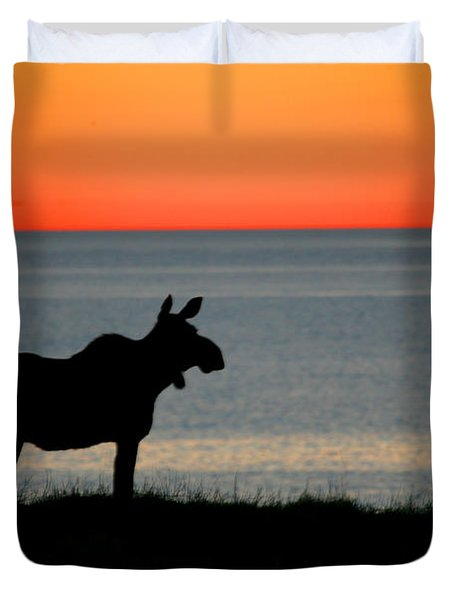 Moose Silhouetted At Sunset, Gros Morne Duvet Cover