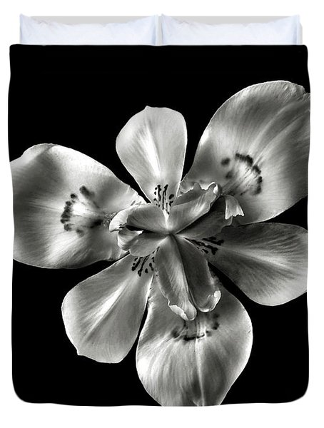 Morea Lily In Black And White Duvet Cover