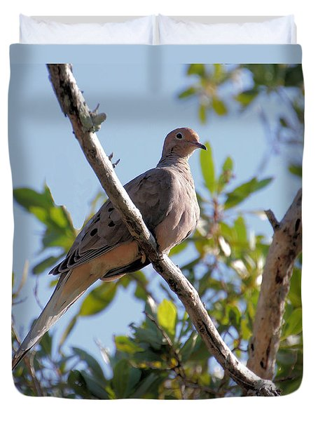 Duvet Cover featuring the photograph Morning Dove by Rosalie Scanlon