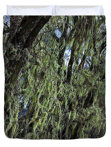 Moss Covered Trees Duvet Cover