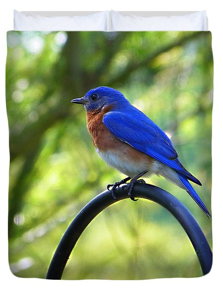 Mr Bluebird Duvet Cover