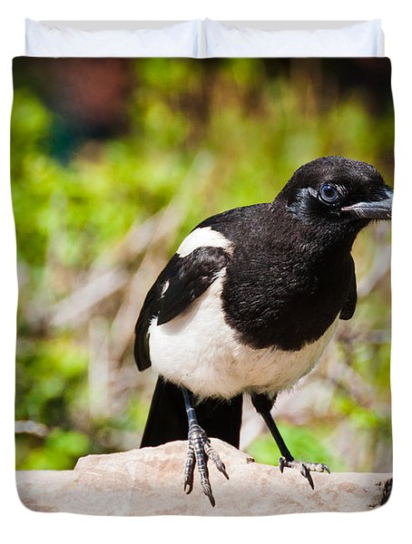 Mr. Magpie Duvet Cover by Cheryl Baxter