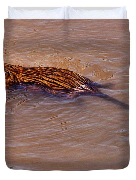 Muskrat Swiming Duvet Cover