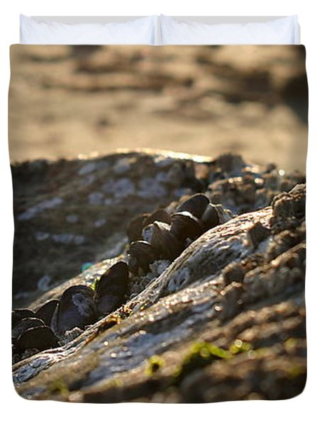 Mussels Sunset Duvet Cover