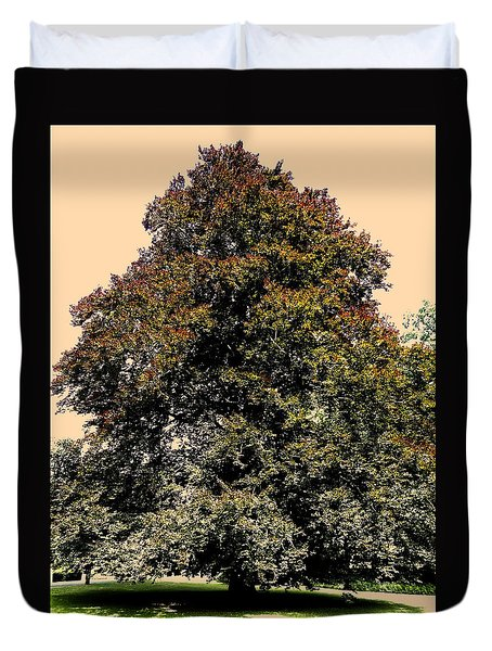 My Friend The Tree Duvet Cover by Juergen Weiss