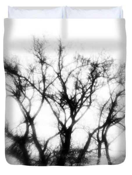 Mysterious Trees Duvet Cover by David Ridley