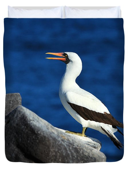 Nazca Booby Duvet Cover by Tony Beck