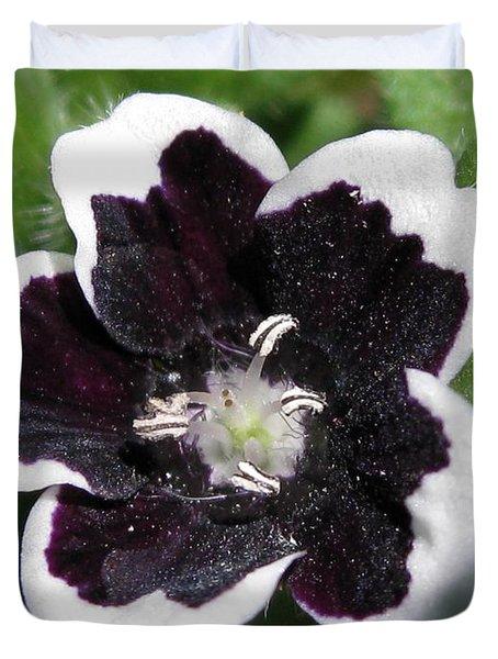 Nemophilia Named Penny Black Duvet Cover by J McCombie