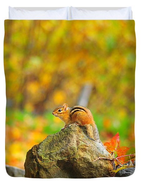 New Hampshire Chipmunk Duvet Cover by Catherine Reusch Daley