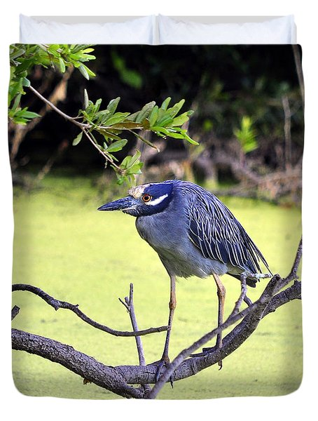Night-heron Duvet Cover by Al Powell Photography USA