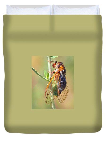 Noisy Cicada Duvet Cover
