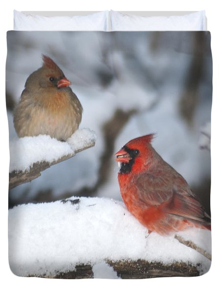 Northern Cardinal Pair 4284 2 Duvet Cover by Michael Peychich