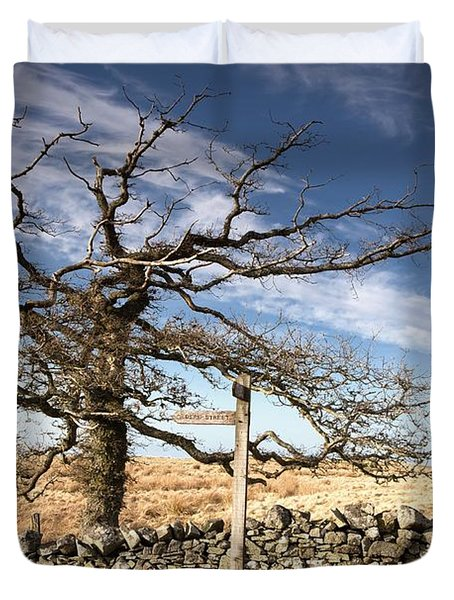 Northumberland, England A Leafless Tree Duvet Cover by John Short