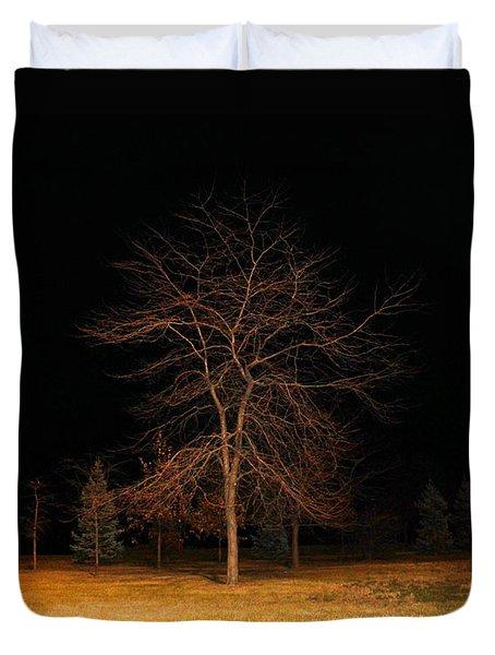 November Night Duvet Cover by Milena Ilieva