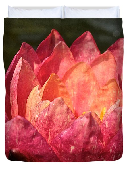 Nymphaea Profile Duvet Cover by Susan Herber