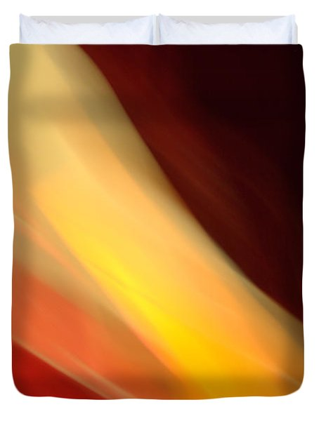 Duvet Cover featuring the mixed media O'keefe Iv by Terence Morrissey