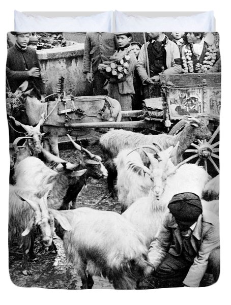 Old Palermo Sicily - Goats Being Milked At A Market Duvet Cover by International  Images