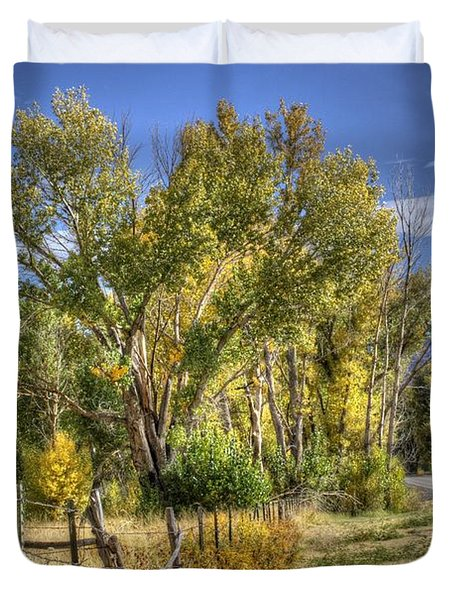 Duvet Cover featuring the photograph Old Ranch Near Bishop by Michele Cornelius