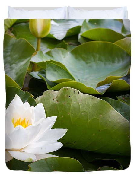 Open And Closed Water Lily Duvet Cover by Semmick Photo
