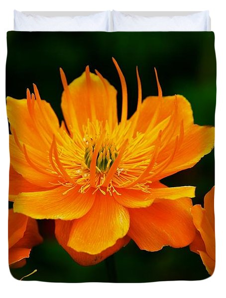 Orange And Yellow Duvet Cover by Eric Tressler