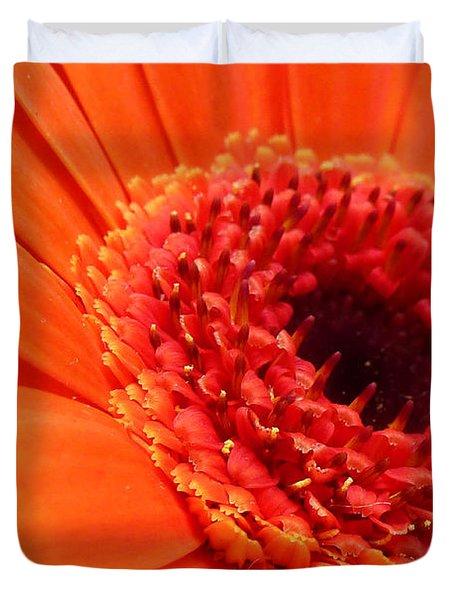 Orange Gerbera Close Up Duvet Cover by Ken Brannen