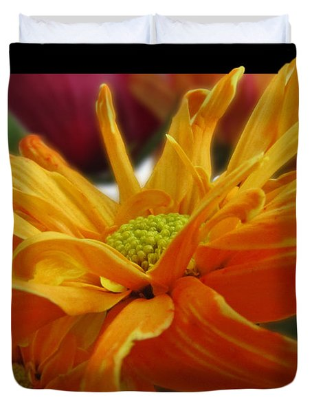 Duvet Cover featuring the photograph Orange Juice Daisy by Debbie Portwood
