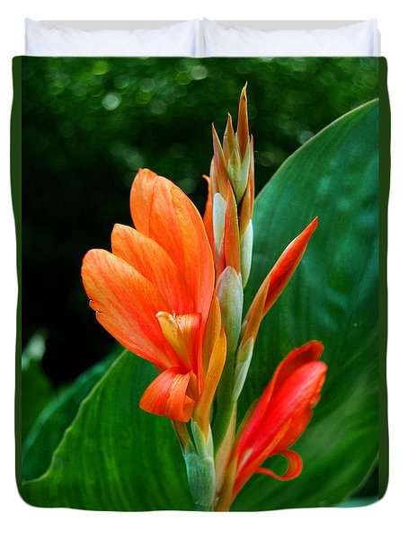 Orange Duvet Cover by Linda Mesibov