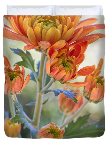 Orange Mums Duvet Cover by Heidi Smith