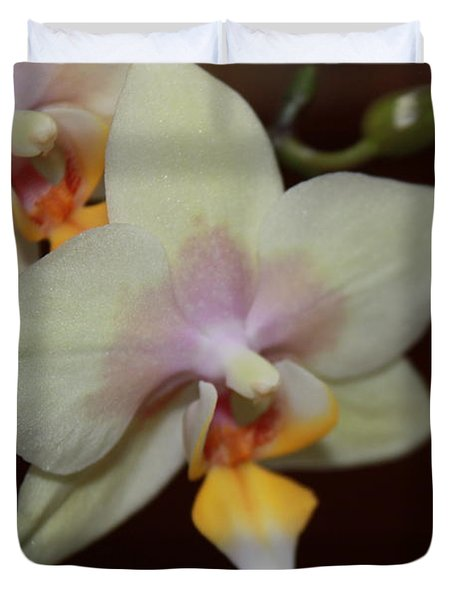 Orchid I Duvet Cover by Kelly Hazel