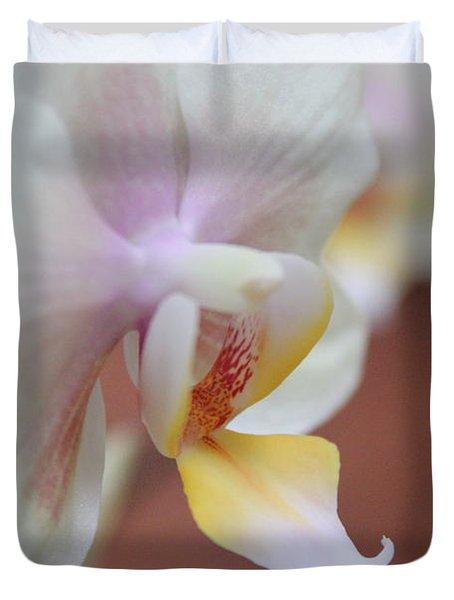 Orchid II Duvet Cover by Kelly Hazel