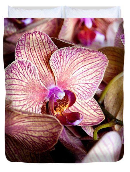 Orchid IIi Duvet Cover by Christopher Holmes